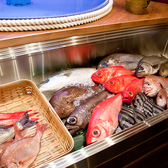 魚七鮮魚店 稲毛直売所の雰囲気3