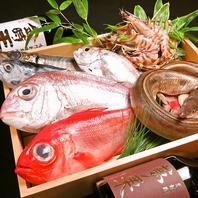 徳島の地元素材を使った海鮮料理の数々でお酒がすすむ!