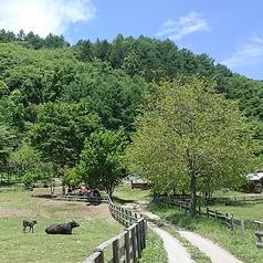 やさい村信州高遠藤沢郷 こかげの写真
