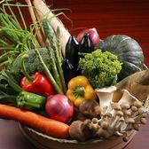 シェフ厳選の新鮮野菜♪