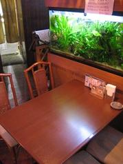 優雅に泳ぐ熱帯魚を見ながらお食事できます。