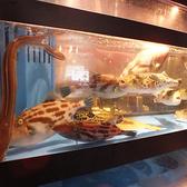 波平キッチンの雰囲気3