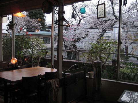 秘かに知られる穴場!?大きな窓から桜並木が見渡せます。ご予約はお早めに!!