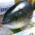 祐一郎の魚介類は北海道のブランド漁港『厚岸』から直接仕入れで鮮度抜群!!