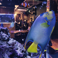 クラゲと熱帯魚による幻想的な空間♪