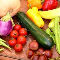 地場の季節野菜をふんだんに使った優しいイタリアン♪