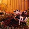 テラス席では牛が放牧された可愛いオブジェも…♪