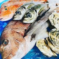 店主自ら『目利き』を行う新鮮魚介を美味しくご提供