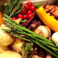 ヘルシー♪彩り野菜♪