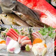 季節ごとの新鮮な魚介類に舌つづみ♪