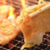 ホルモン天狗 亀戸店 ごはん,レストラン,居酒屋,グルメスポットのグルメ