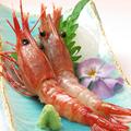 料理メニュー写真北海道産 牡丹海老