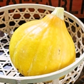 長岡川口産【サラダかぼちゃ※コリンキー】全国的にも珍しい生で食べることのできるかぼちゃです。サクサクした食感と香りがバーニャソースとよく合います!