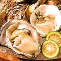 料理メニュー写真細島産 生牡蛎 二個