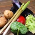 実家の山直送の野菜たち。