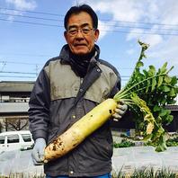 地元の農家さんから仕入れる、安心安全の新鮮お野菜。