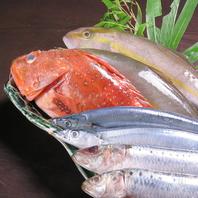 毎朝仕入れる鮮魚。海鮮自慢!
