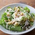 料理メニュー写真オーガニック野菜のシーザーサラダ オーガニックキャロットのドレッシング&スーパーBIOフードきく芋入
