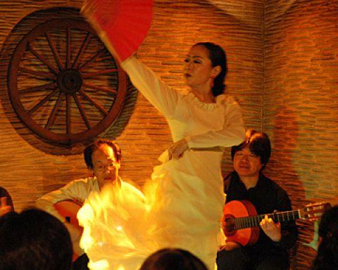 毎夜19時30分と21時30分、本格的な舞台で熱気に満ちたフラメンコが繰り広げられる。