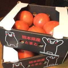 【ベジタリアン】 トマトの冷たいサラダ