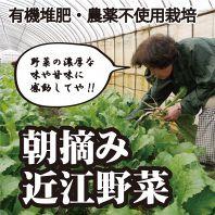 自家栽培の近江野菜