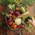 【産地にこだわったヘルシーなMENU】契約農家から送られるお野菜や、漁港より直送の鮮魚など、その時期の旬の食材をこだわりを持って仕入れ、お料理に使用しております。