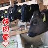 焼肉 火の蔵 浜松上西店のおすすめポイント1