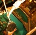 生簀から獲れたて鮮魚を調理!瀬戸内海や呼子・唐津港から天然活イカや活魚が毎日届きます。