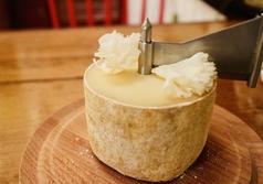 花びらチーズ~プティアグール~