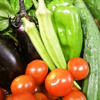 自家農園の完全無農薬野菜