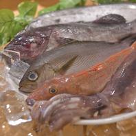 能登半島直送の新鮮魚類