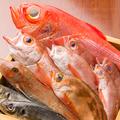 料理メニュー写真馬だけじゃなく、全国津々浦々より新鮮な魚介もご用意しており魚にも自信アリ◎
