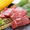 焼肉 ホルモン 王道 花園店のおすすめポイント3