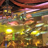 大型いけすに熊本や全国の海の幸が泳ぐ店