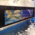 近海で採れた九州の活きたお魚が随時いけすで泳いでいます!!御宴会のコースから単品まで和の職人になんなりとお申し付けください!