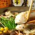 料理メニュー写真日南鶏のきりたんぽ鍋