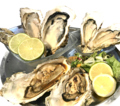 料理メニュー写真生牡蠣&蒸し牡蠣&焼き牡蠣食べ比べ《牡蠣大好きセット》