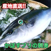 新鮮なお魚をお届けします♪大分の名物『かぼすブリ』