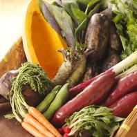 四季折々で楽しむ朝どれの地物野菜