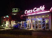 キャッツカフェ 静岡浜松店の雰囲気3