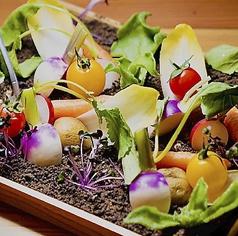 ポンテの野菜畑 ~レ・ヴェルドゥーレ~