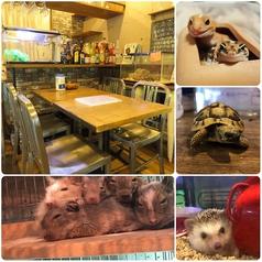 アニマル Cafe Bar ORIS カフェバー オリスの写真