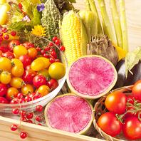 ■ 新鮮旬野菜 ■産直食材