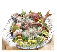 料理メニュー写真鳴門北灘産 天然鳴門鯛のいきづくり(小)