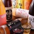 お酒のラインナップに自信あり。女性が嬉しい果実酒だけで8種類、すべて合わせると50種類以上!大船駅で必ず好みのお酒と出会えます。