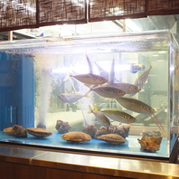 生簀から鮮度抜群の魚をお届け♪