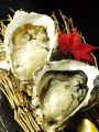 料理メニュー写真【厚岸産ブランド 殻付牡蠣 まるえもん】