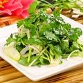 料理メニュー写真香菜サラダ 480円