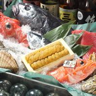 【シェフ厳選】北海道を中心に最も旬な食材を使用!!