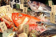三浦半島・相模湾の地魚料理のイメージ写真